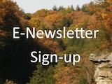 E-newsletter
